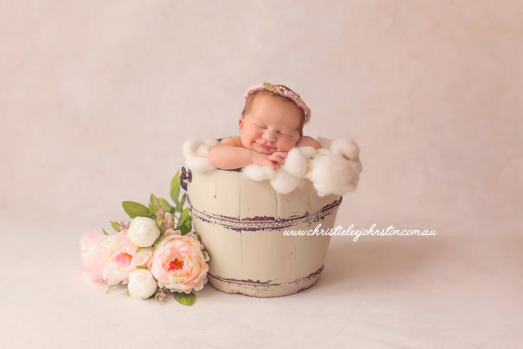 Newborn photos toowoomba, bucket